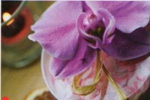 orchidej Balení dárků