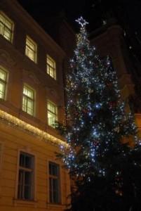 První vánoční strom